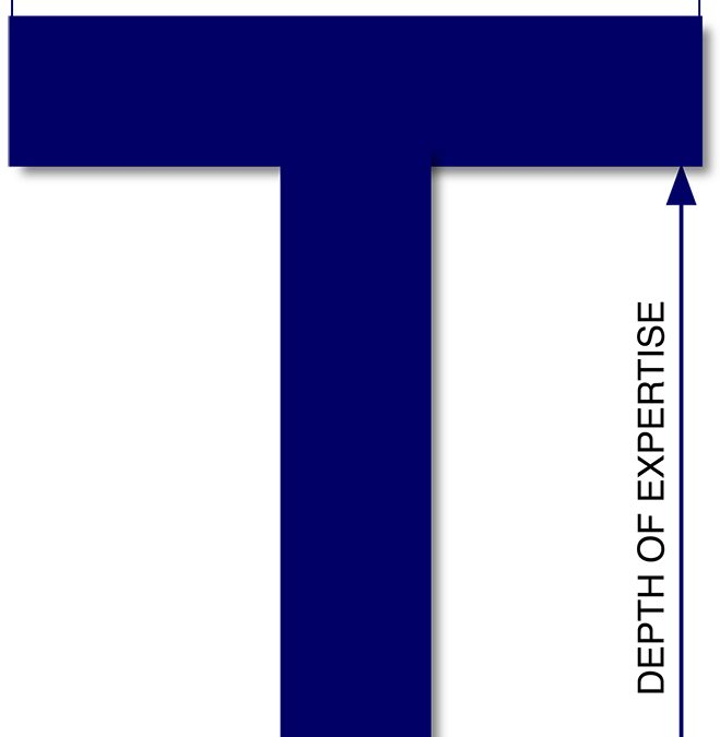 "The ""T"" Is Getting Wider: The Evolution of T-Shaped IT Risk Management Professional"