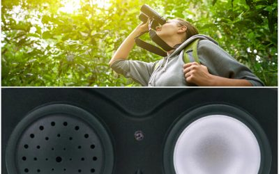 Ultrasonic Repellent vs. Birdwatcher: Two Approaches to IT Risk Management